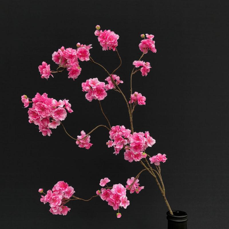 Bloesem donker roze