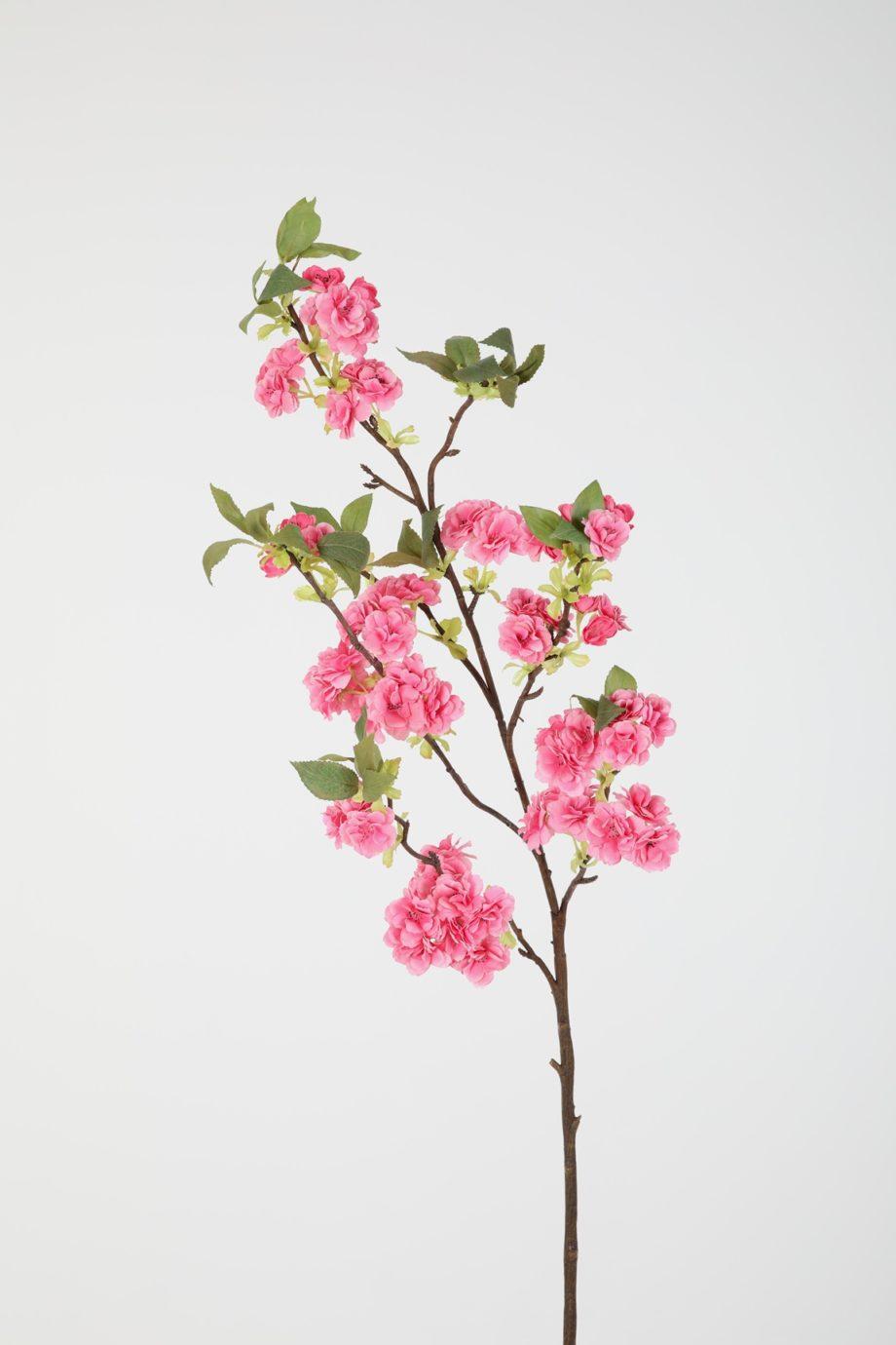 donker roze bloesemtak