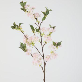 zacht roze bloesem