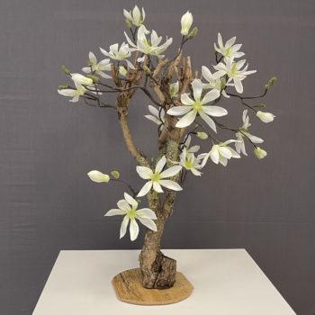 Kunst Magnolia
